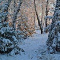 Тепло  и  холод :: Геннадий С.