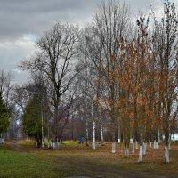 Уголок старого парка :: Юрий