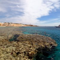 Hadaba beach. Sharm El Sheikh. :: Сергей Адигамов