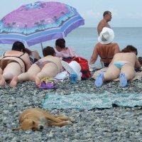 На пляжу... :: Александр Акилов