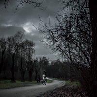 Велосипедист. :: Ozokan Головкин