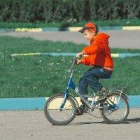Велосипедное лето :: Роман