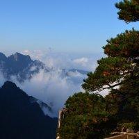 Плывущие облака :: Полина Шпак