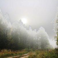 Туман с подсветкой :: Damir Si