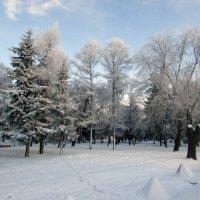 Очарование зимы :: раиса Орловская
