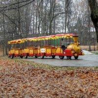 Поезд в Ромашково :: Андрей Куприянов