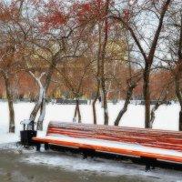Про скамейку в снегу :: galina tihonova