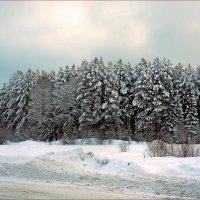 Зимняя мгла. :: Любовь Чунарёва