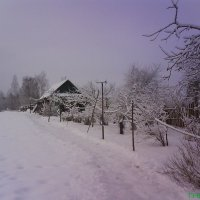 Февраль в деревне... :: BoxerMak Mak