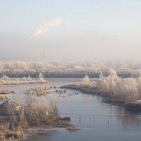 Утро. Туман. Ноябрь :: Арсений Корицкий