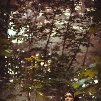 Волшебный лес :: Ольга Ёлочкина
