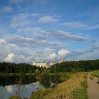 Лебедянский пруд летом :: Андрей Лукьянов