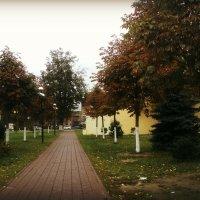 Осенняя аллея :: Ольга Кривых
