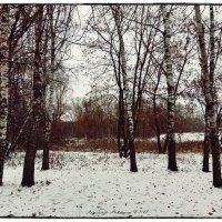 Осень :: Алексадр Мякшин