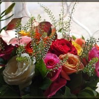 букет из роз :: Natalia Mihailova