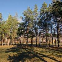Осенний парк :: раиса Орловская