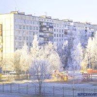 Встречаем зиму :: Druma Bassters