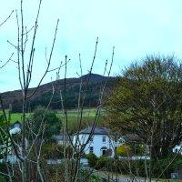 Природа Ирландии. :: zoja