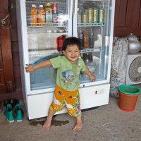 Лаос. Вьентьян. Защитник домашнего холодильника :: Владимир Шибинский