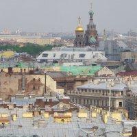 Над крышами домов. :: Святец Вячеслав