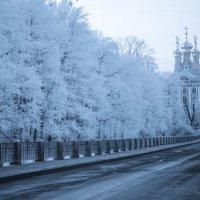 зима пришла :: Денис Смирнов