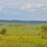 Озеро Свитязь :: jerry pet