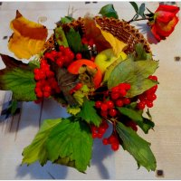 Осенние плоды и роза... :: Тамара (st.tamara)