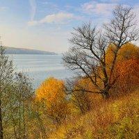 Осень на Волге :: Leonid 44