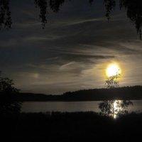 вечер :: Ольга Cоломатина