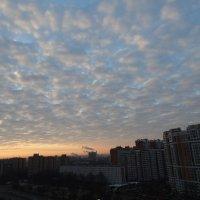 Утреннее небо над городом :: Svetlana27