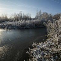 Зимние :: Андрей Чиченин