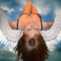 Angel :: Alena Soldatova
