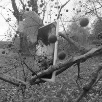 Осень :: Ирина Полищук