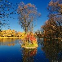 парк победы :: Laryan1