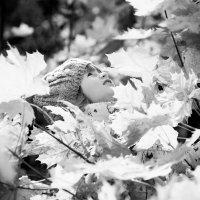 BW fall :: Victoria Bryfar