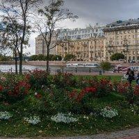 На Заячьем острове :: Владимир Лисаев