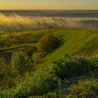 Туман стелется лугами :: Сергей Корнев