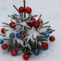 Первый снег :: Mariya laimite