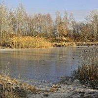 Первый лед :: Мария Богуславская