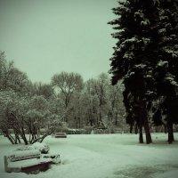 Зимняя...... :: Эриака