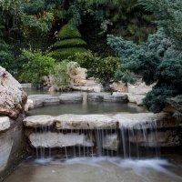 Японский сад :: Alex Krasny