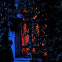 ..Вот опять окно.... :: Ира Егорова :)))
