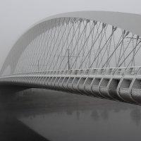 туманное утро :: Юрий Ващенко