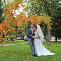 свадьба :: Полина Луговенко