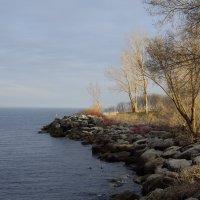 Вечерняя прогулка вдоль оз. Онтарио... :: Юрий Поляков