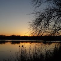 Ранний вечер в ноябре... :: Тамара (st.tamara)