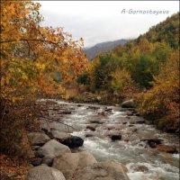 Хорошо,что есть осень... :: Anna Gornostayeva