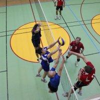 Кубок по волейболу :: victor maltsev