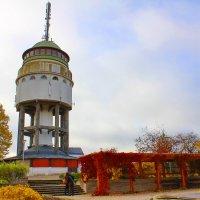 Смотровая башня :: Валентина