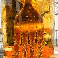 Светлое пиво :: MVMarina